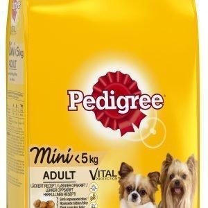 Pedigree Mini Kanaa 1