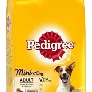Pedigree Mini Kanaa Ja Kasviksia 2 Kg Koiran Kuivaruoka