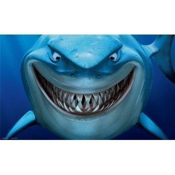 Penn Plax Hitta Nemo Akvariebakgrund Bruce 51x31 Cm