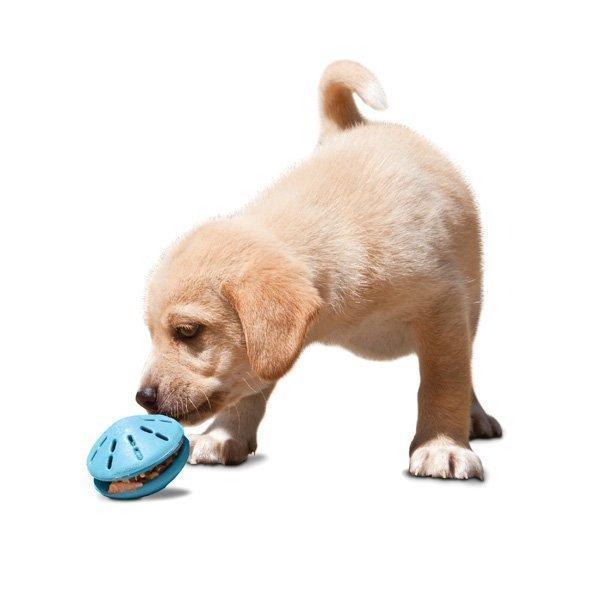 Petsafe Busybuddy Puppy Twist´N Treat