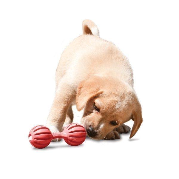 Petsafe Busybuddy Puppy Waggle