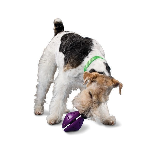 Petsafe Busybuddy Twist´N Treat