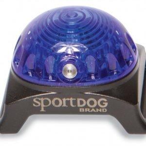 Petsafe Sportdog Vilkkuvalo Sininen