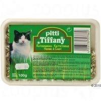 Pitti-kissanruoho rasiassa - säästöpakkaus: 3 x 100 g
