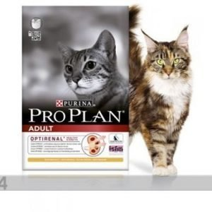 Proplan Kissanruoka Pro Plan Adult Cat Kana & Riisi 1