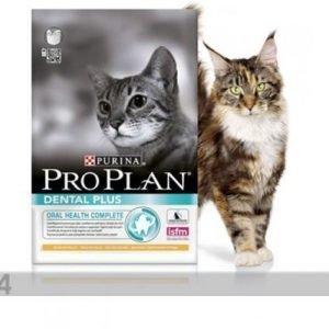 Proplan Kissanruoka Pro Plan Adult Dental Plus Kana & Riisi 1