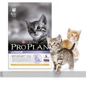 Proplan Kissanruoka Pro Plan Junior Kana & Riisi 1