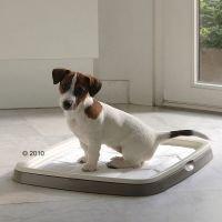 Puppy Trainer -aloituspakkaus - säästöpakkaus: keskikokoinen