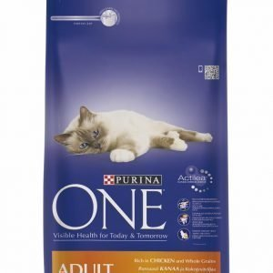 Purina One Adult 1