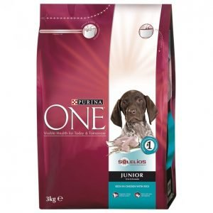 Purina One Koiranruoka 3kg Junior