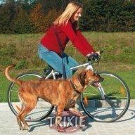 Pyöräily- ja juoksutalutin koiralle