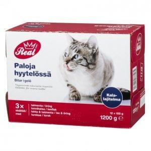 Real Cat Kissanruoka 12 X 100 G Kalalajitelma