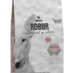 Robur Dog Adult Sensitive Single Protein Salmon 12