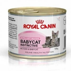 Royal Canin Babycat Instinctive Mousse 12x195 G