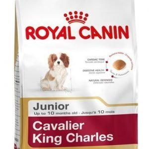 Royal Canin Cavalier King Charles Junior 1.5kg