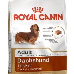 Royal Canin Dog Dachshund Adult 1.5kg