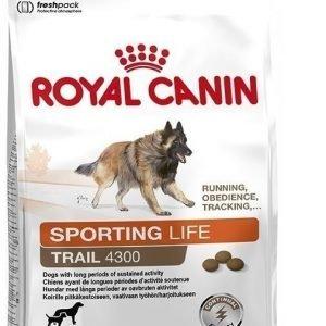 Royal Canin Dog Energy Trail 4300 15 Kg