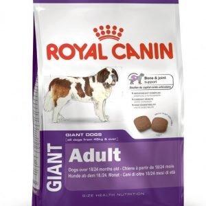 Royal Canin Dog Giant Adult 15kg