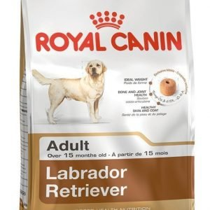 Royal Canin Dog Labrador Retriever Adult 12 Kg