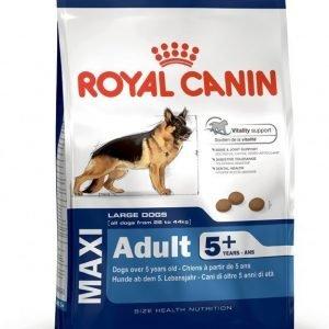 Royal Canin Dog Maxi Adult +5 15 Kg