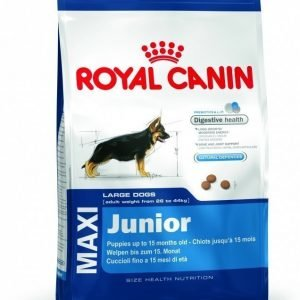 Royal Canin Dog Maxi Junior 4kg