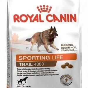 Royal Canin Dog Performance Energy 4300 15 Kg