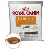Royal Canin Energy -makupala - säästöpakkaus: 4 x 50 g
