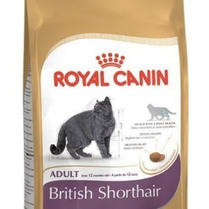 Royal Canin Feline British Shorthair 34 4 Kg