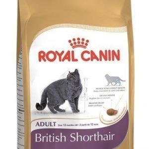 Royal Canin Feline British Shorthair 34 4 Kg