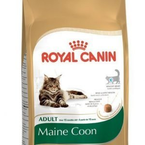 Royal Canin Feline Maine Coon 31 2 Kg