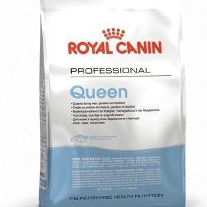 Royal Canin Feline Queen 34 4 Kg