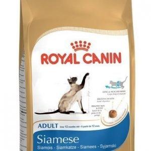 Royal Canin Feline Siamese 38 4 Kg