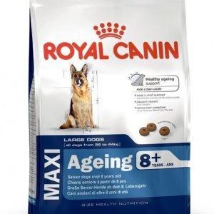Royal Canin Maxi Ageing +8 15 Kg