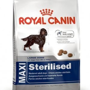 Royal Canin Maxi Sterilised 15kg