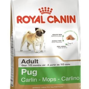 Royal Canin Mops Adult 3 Kg