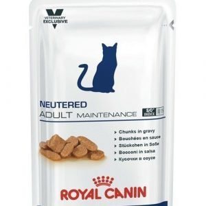 Royal Canin Neutered Adult Maintenance Wet 12x100g