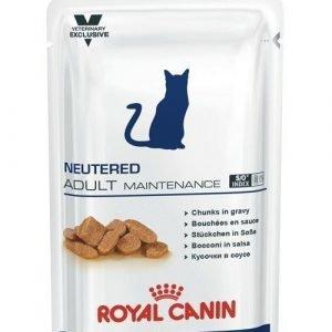 Royal Canin Neutered Adult Maintenance Wet 12x100g