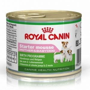 Royal Canin Starter Mousse 12x195 G