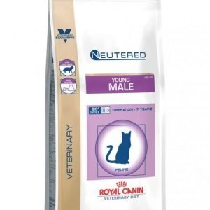 Royal Canin Vec Cat Young Male 1