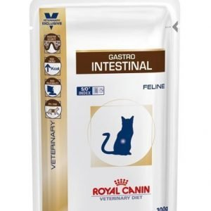 Royal Canin Veterinary Diets Cat Intestinal Pouch 12x100 G
