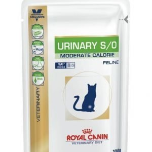 Royal Canin Veterinary Diets Cat Urinary S / O Moderate Calorie Pouch 12x100 G
