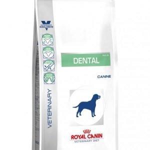Royal Canin Veterinary Diets Dog Dental 6 Kg