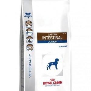 Royal Canin Veterinary Diets Dog Intestinal Junior 2
