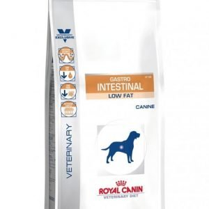 Royal Canin Veterinary Diets Dog Intestinal Low Fat 1