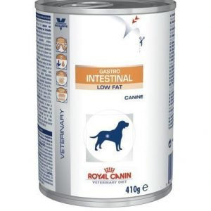 Royal Canin Veterinary Diets Dog Intestinal Low Fat Wet 12x410 G