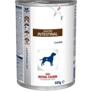 Royal Canin Veterinary Diets Dog Intestinal Wet 12x400 G