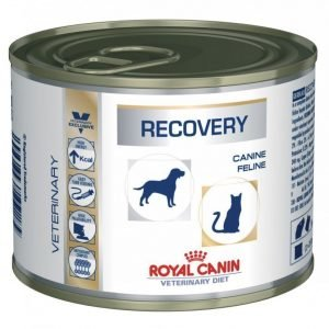 Royal Canin Veterinary Diets Recovery Wet 12x195 G