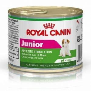 Royal Canin Wet Mini Junior 12x195g