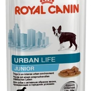 Royal Canin Wet Urban Life Junior 10x150g