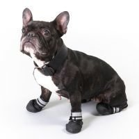 S & P Boots -koirankengät - koko XXL (7)